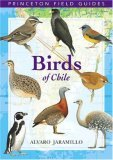 Birds of Chlle